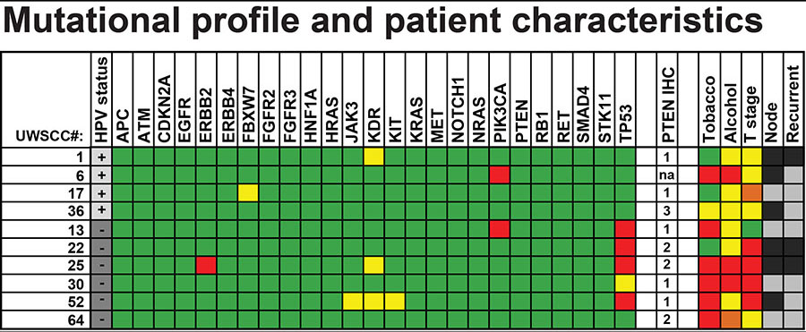 Mutational profile and patient characteristics