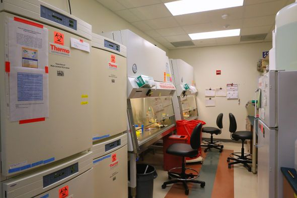 Harari Lab Tissue Culture Room